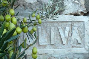 Ferienhaus OLIVA Hausschild