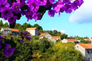 Ferienhaus OLIVA Inselurlaub Hvar